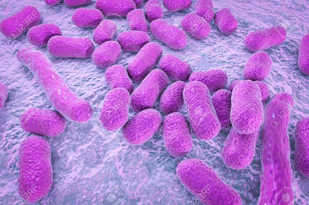 Totul despre acinetobacter, bacteria descoperita la Institutul Marius Nasta
