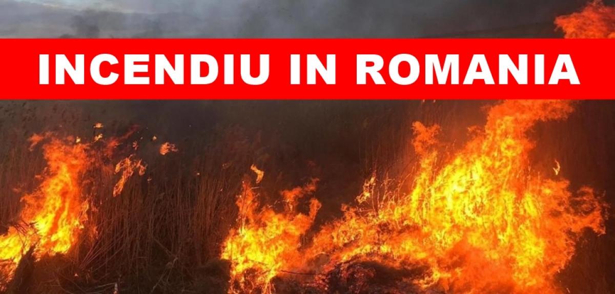 ULTIMA ORA: Incendiu MASIV in Romania! Blestemul Notre-Dame se extinde. A ars TOT