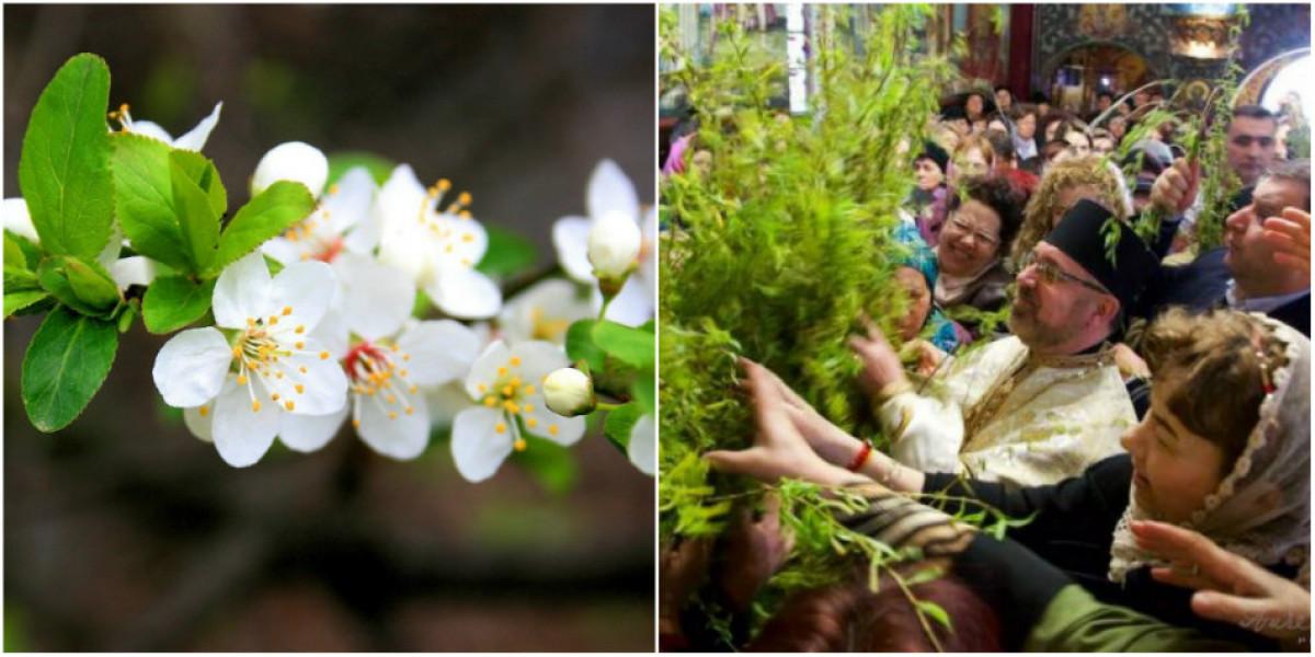Traditii de Florii si obiceiuri romanesti! Ce semnificatie ascunde ziua sfanta de Florii
