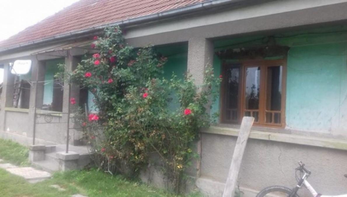 Anunt incredibil: Poti primi o casa GRATIS, la tara, in Romania. Plus un teren de 5 hectare
